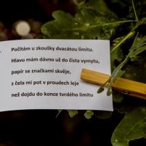 04-ukoly-v-tymech-13-small